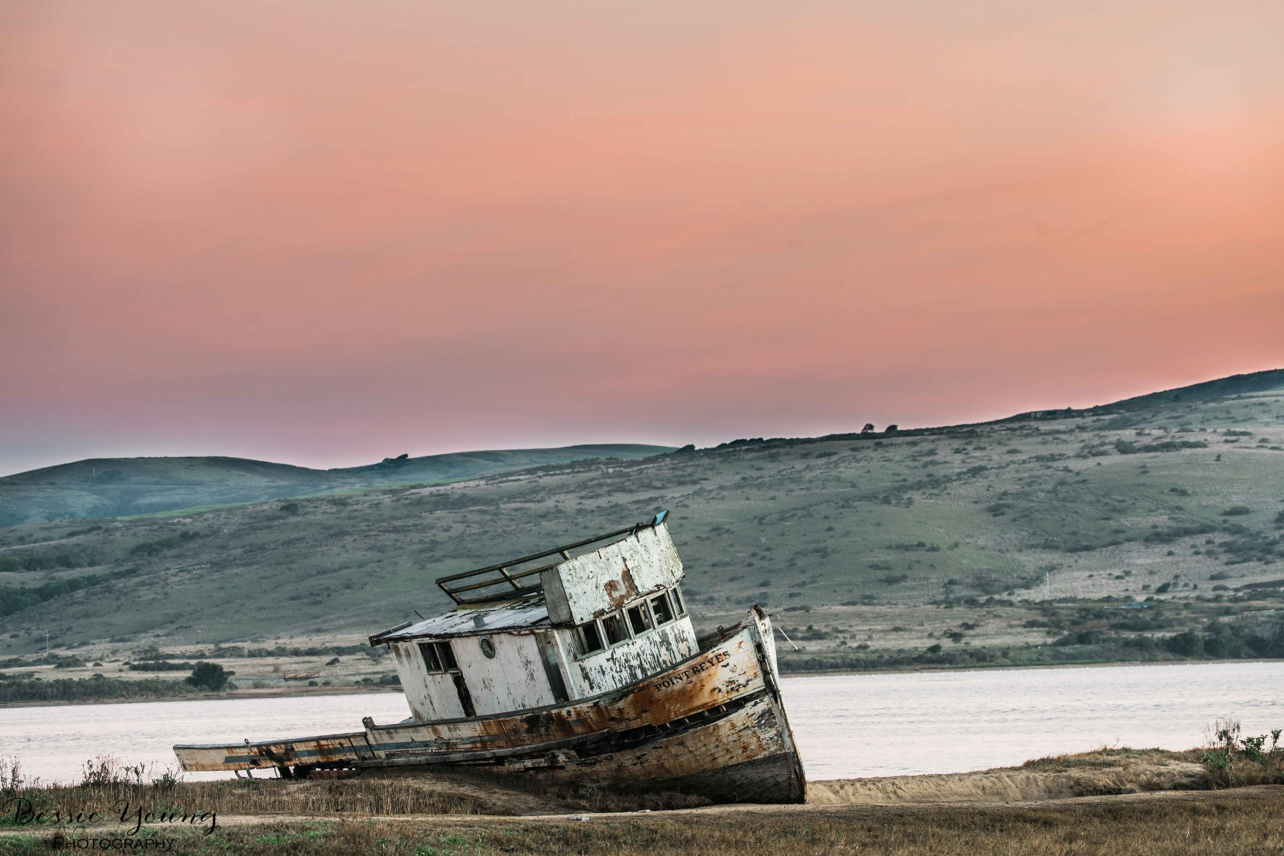 Point Reyes National Seashore 2016 - Bessie Young Photography-6.jpg