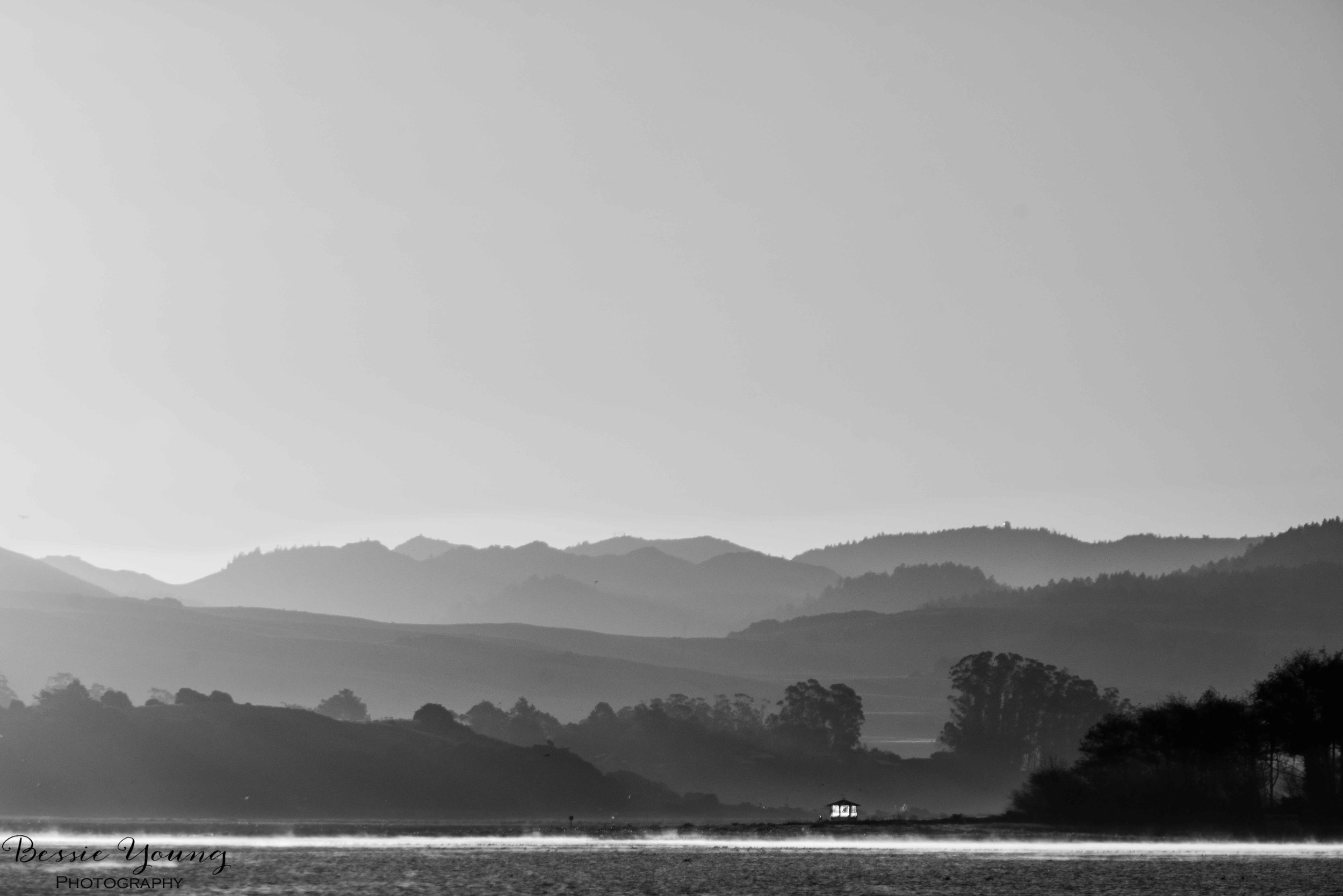 Black and White Point Reyes National Seashore by Bessie Young