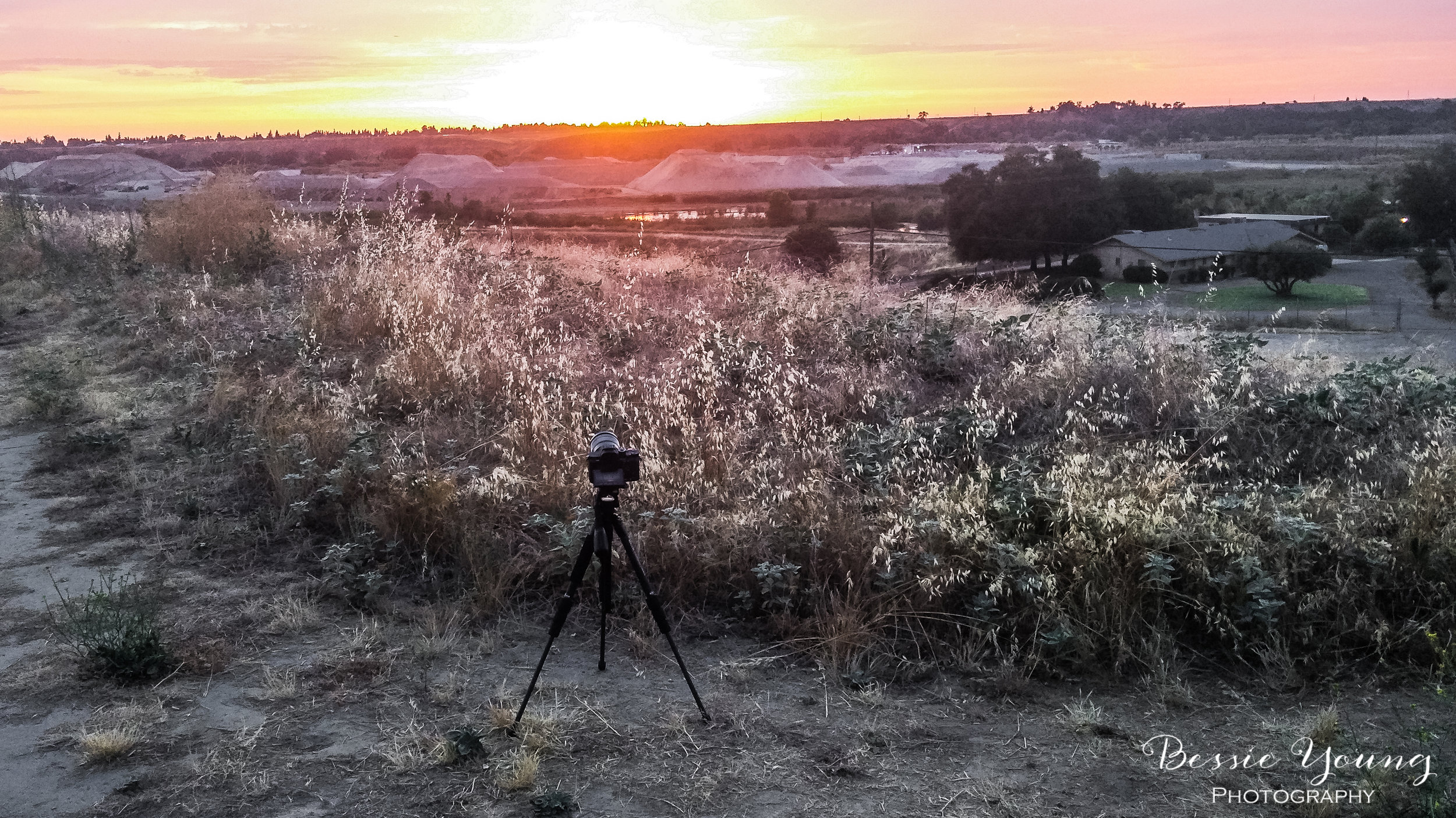 Sunset Time Lapse Sony A7Rii - Woodward Park, Fresno- Bessie Young Photography-4.jpg