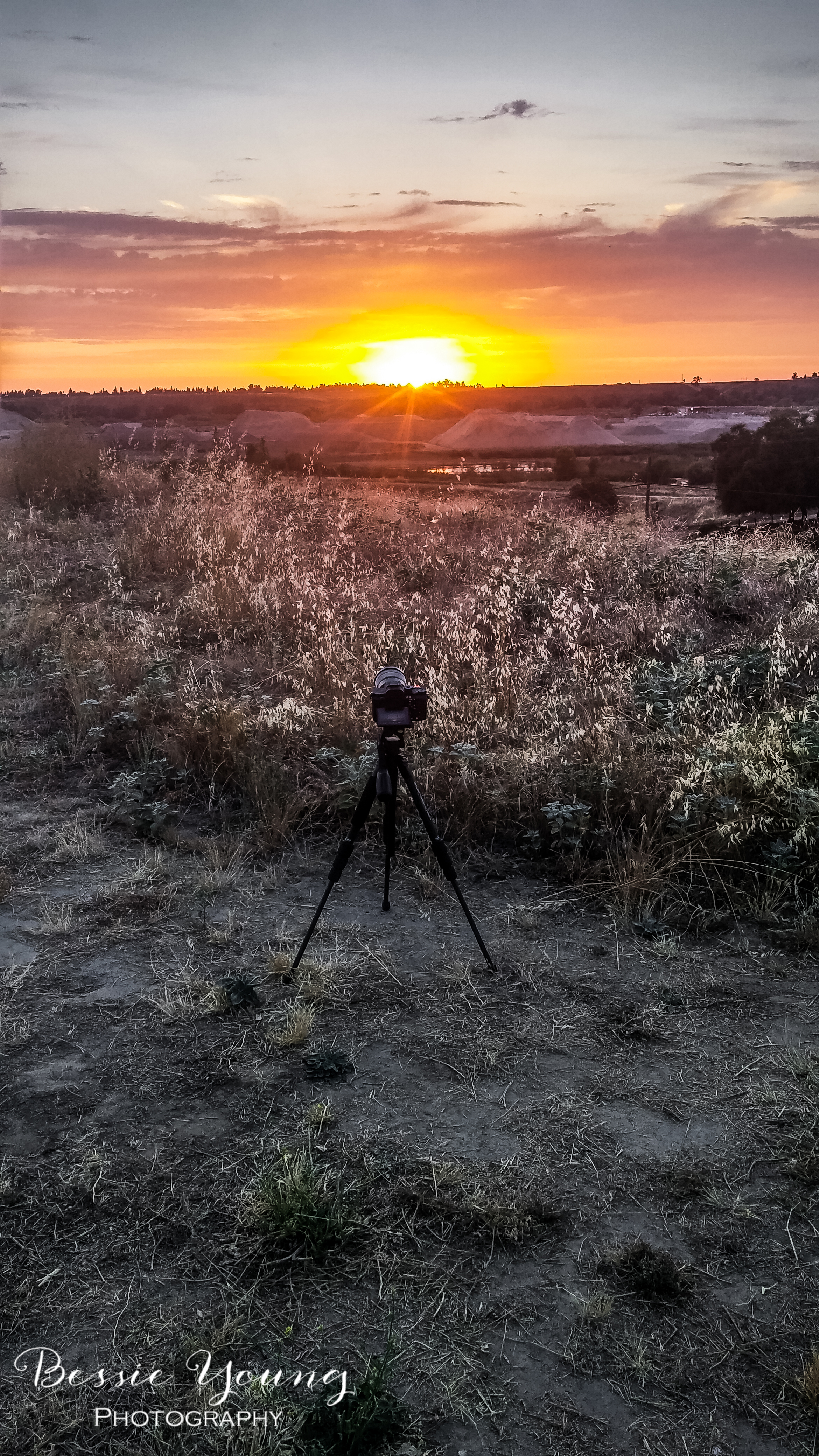 Sunset Time Lapse Sony A7Rii - Woodward Park, Fresno- Bessie Young Photography.jpg