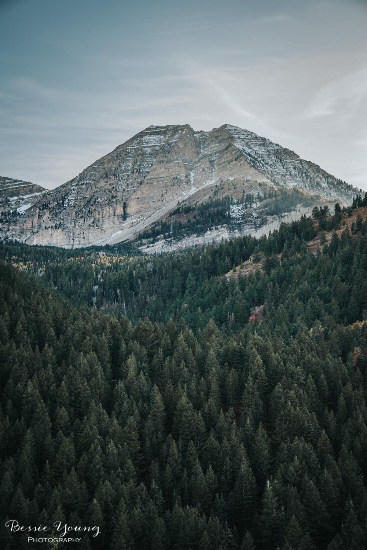 Alpine Loop Utah - Bessie Young Photography 2017-8.jpg