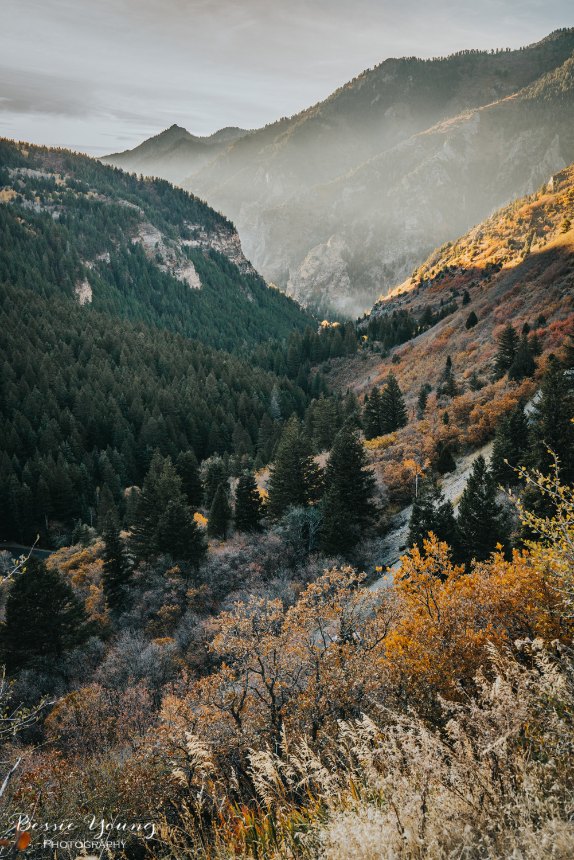 Alpine Loop Utah - Bessie Young Photography 2017-13.jpg
