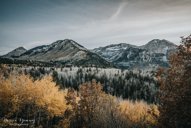 Alpine Loop Utah - Bessie Young Photography 2017-29.jpg