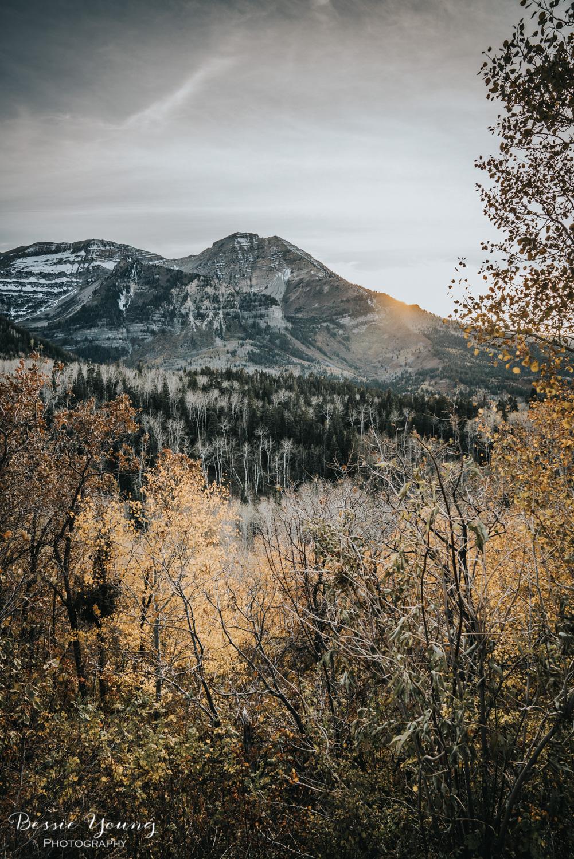 Alpine Loop Utah - Bessie Young Photography 2017-22.jpg