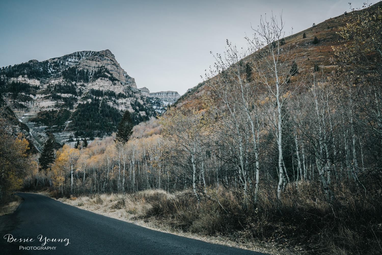 Alpine Loop Utah - Bessie Young Photography 2017-47.jpg