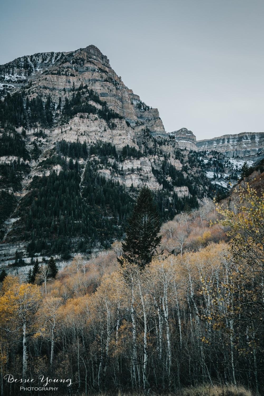 Alpine Loop Utah - Bessie Young Photography 2017-50.jpg