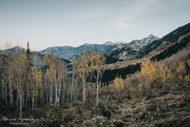 Alpine Loop Utah - Bessie Young Photography 2017-44.jpg