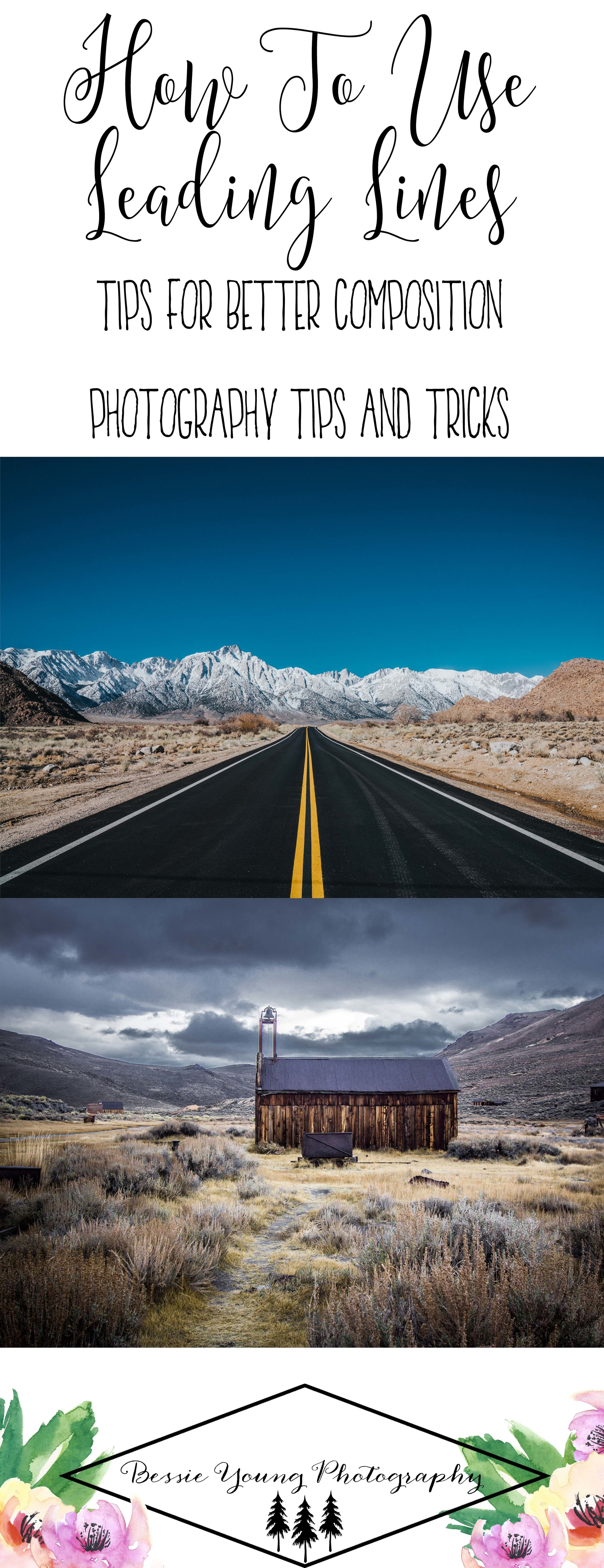 How To Use Leading Lines - Tips for Better Composition - Photography Tips and Tricks by Bessie Young Photography