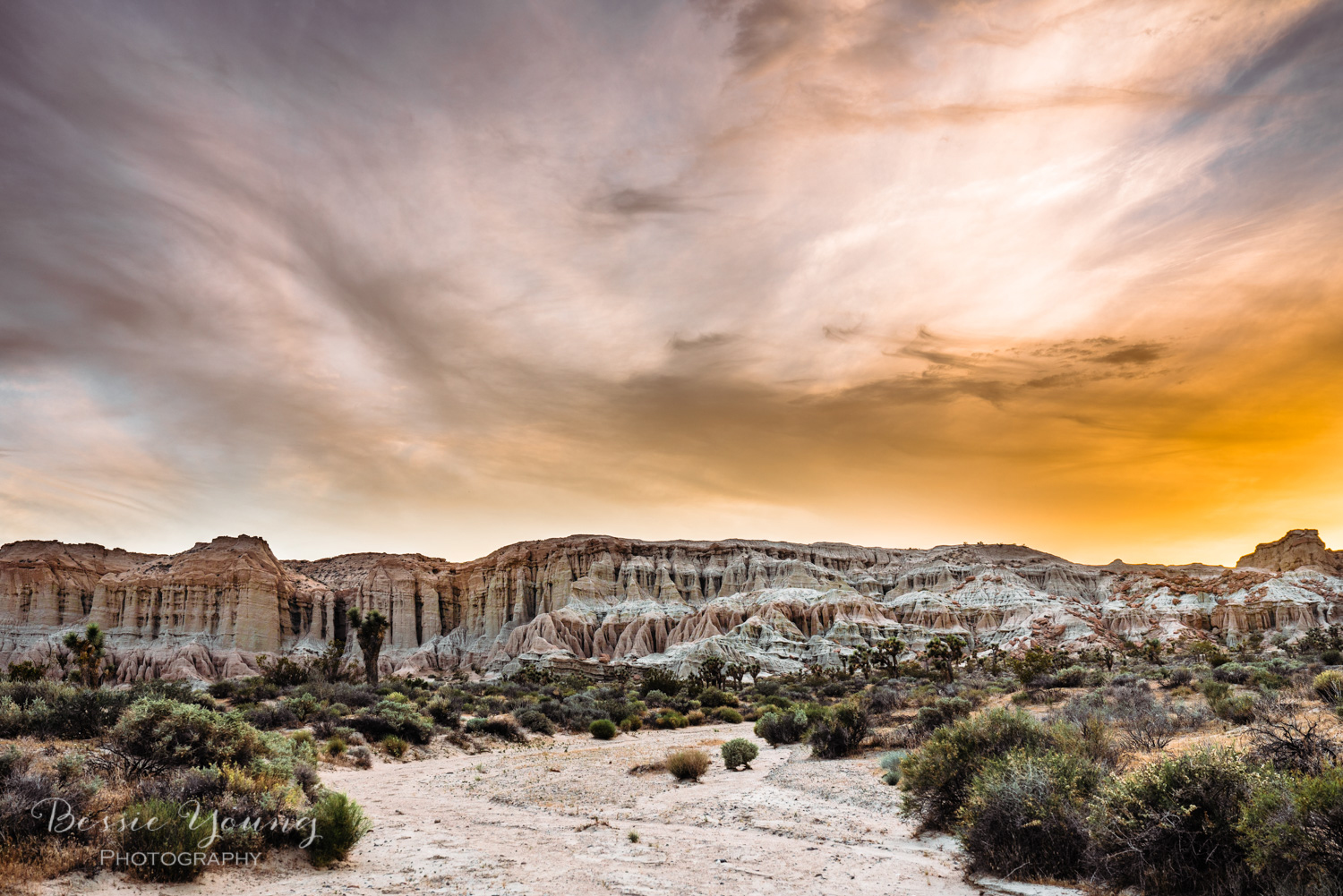 Red Rock Canyon Mojave Desert- Bessie Young Photography 2018-18.jpg