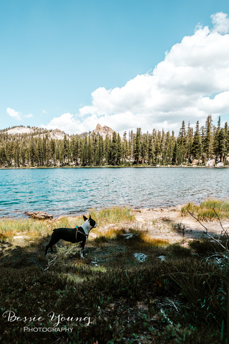 Backpacking Dinkey - Cliff Lake - 2018 - Bessie Young Photography-47.jpg