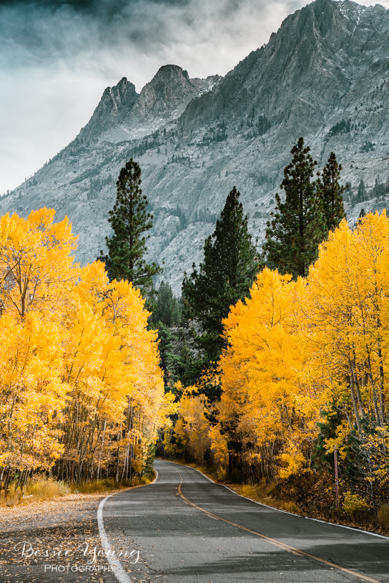 Fall Landscape Photography June Lake California by Bessie Young 12.jpg