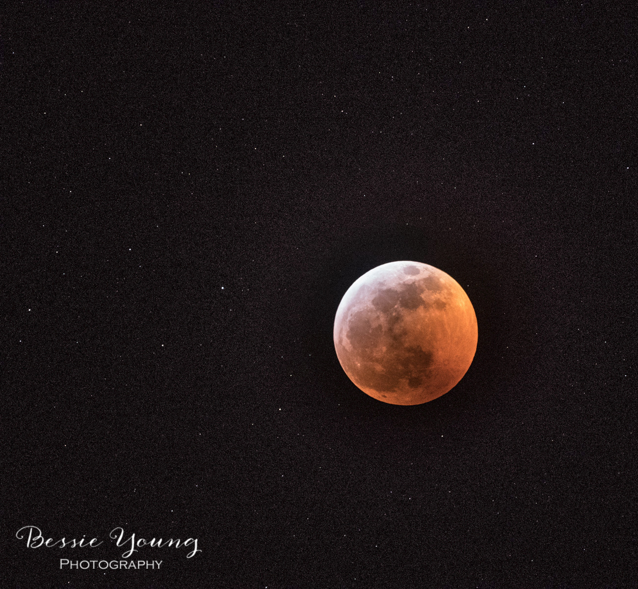 Super+Blood+Wolf+Moon+Landscape+Photography+by+Bessie+Young