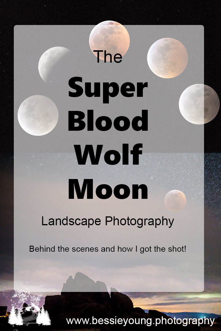 Super Blood Wolf Moon Landscape Photography by Bessie Young Photography.jpg