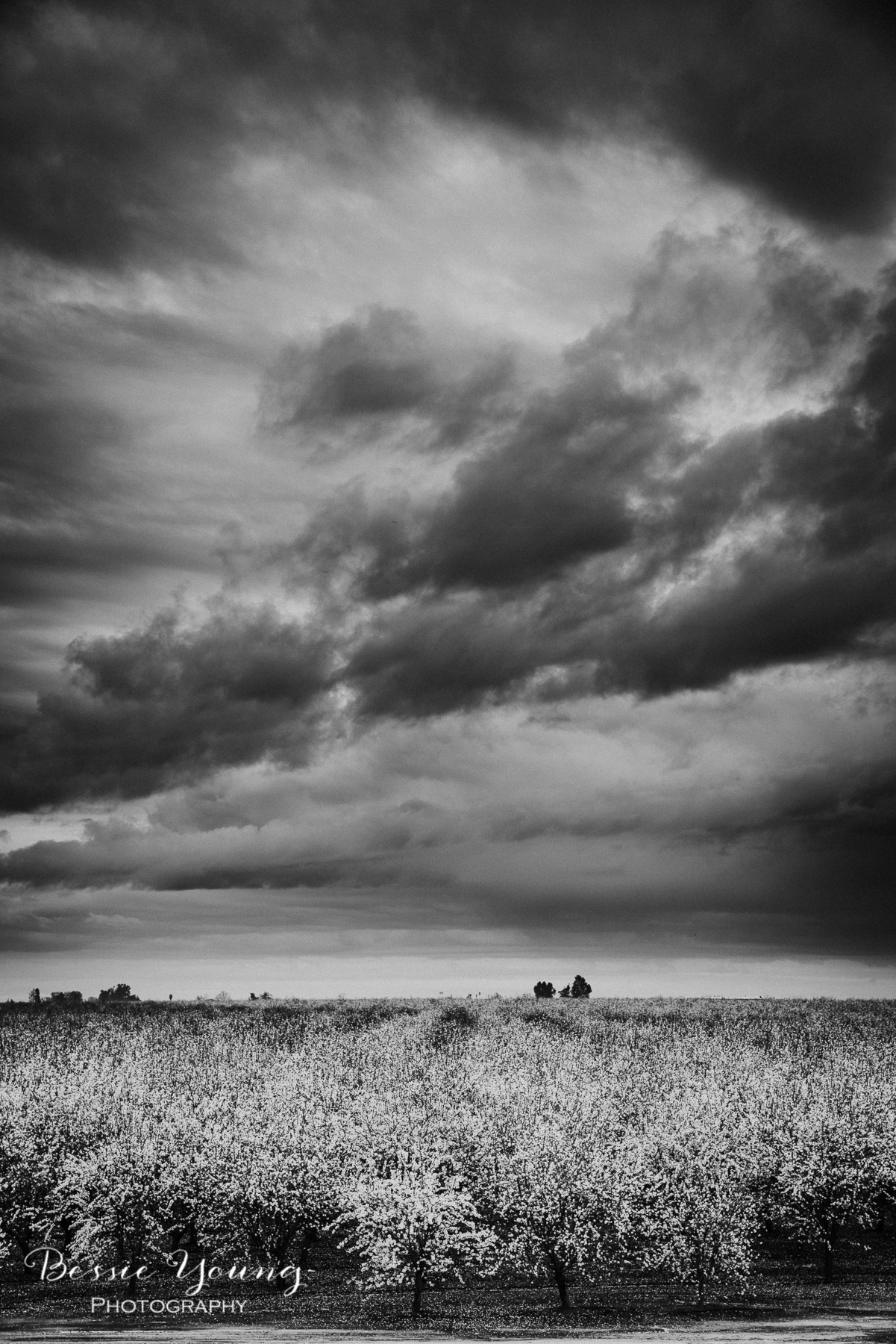 Failure - Landscape Photography by Bessie Young Photography-5.jpg