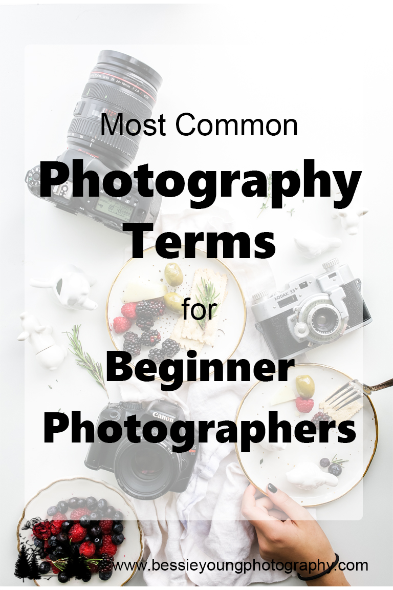 Most Common Photography Terms for Beginner Photographers by Bessie Young Photography - Photography tips and tricks - Learn Photography.jpg