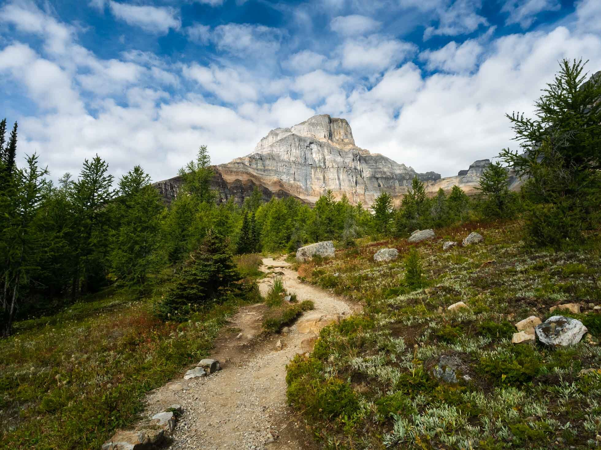 Larch Valley looking to Pinnacle Mountain