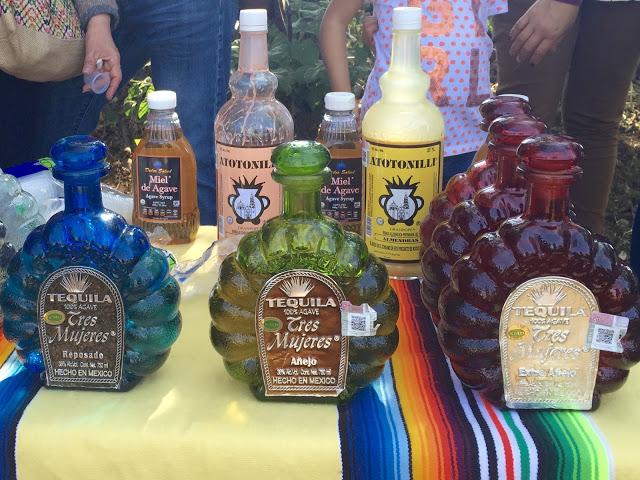 tequila 04.jpg