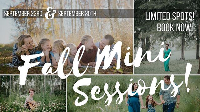 I've been getting a ton of messages from folks looking to get fall photos before the snow flies (which seems to be looming right around the corner... brrrrr!) so, I've decided to open up the next two SUNDAY's for some last minute Mini Sessions! 🍂🌲🍁Yay!  Here are the deets: 30 minute Fall Mini Sessions will take place along the river in beautiful Taylor, BC, the cost is $275 and includes 15+ High resolution images delivered via online gallery! $50 retainer is required to hold your spot.  I will be away adventuring for most of October so now is your chance to book to take advantage of the beautiful colours!  UPDATE: the 23rd is almost full- Send me a message ASAP to book!