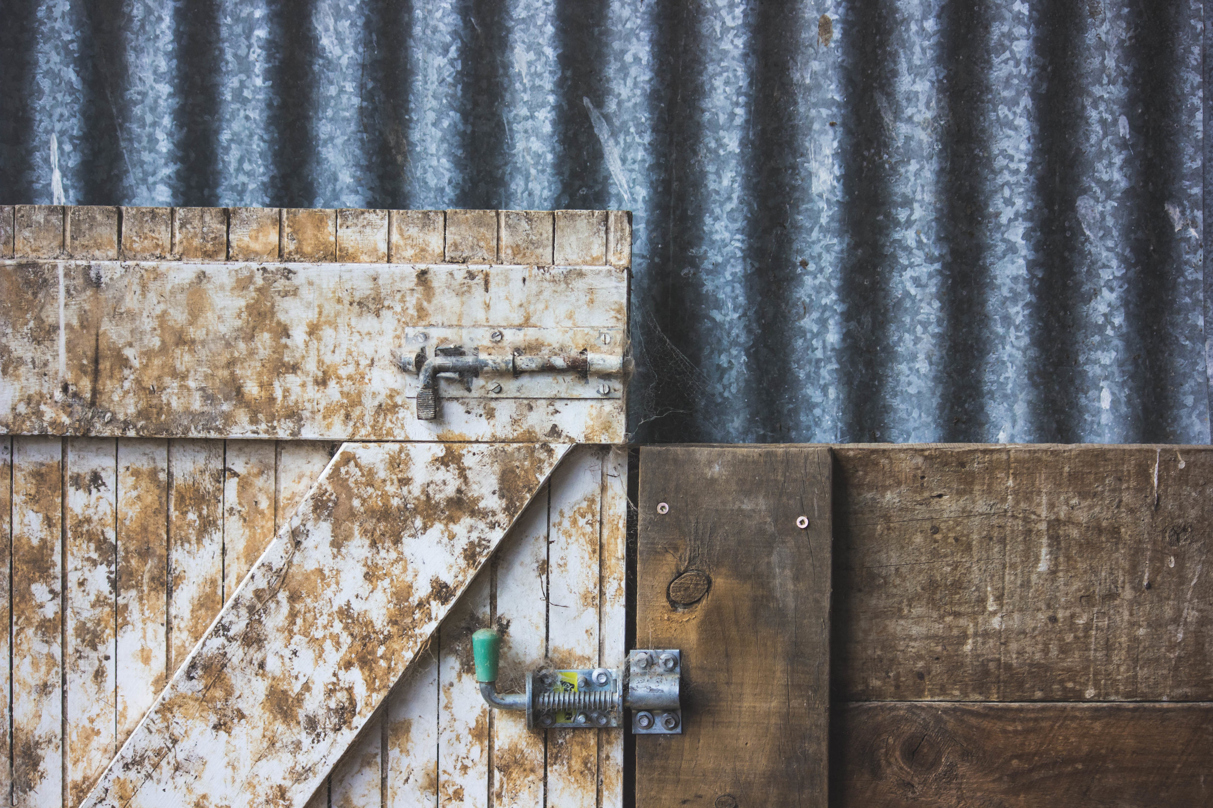 10. Textures in the shed.jpg
