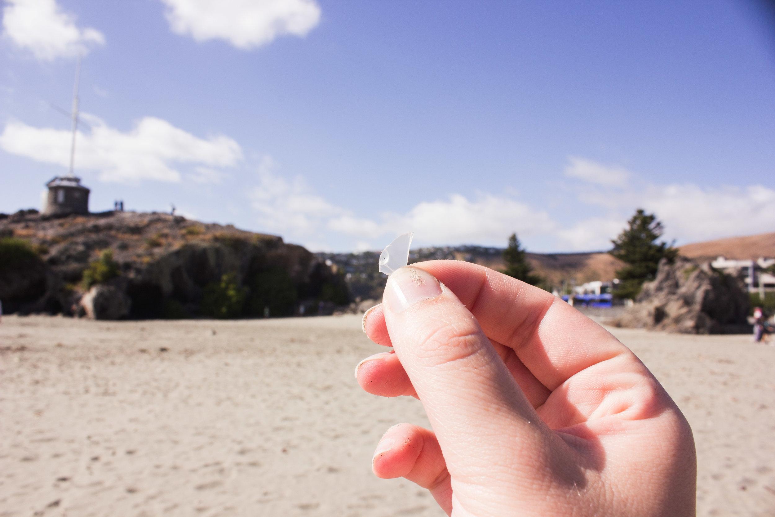 beach-clean-17.jpg
