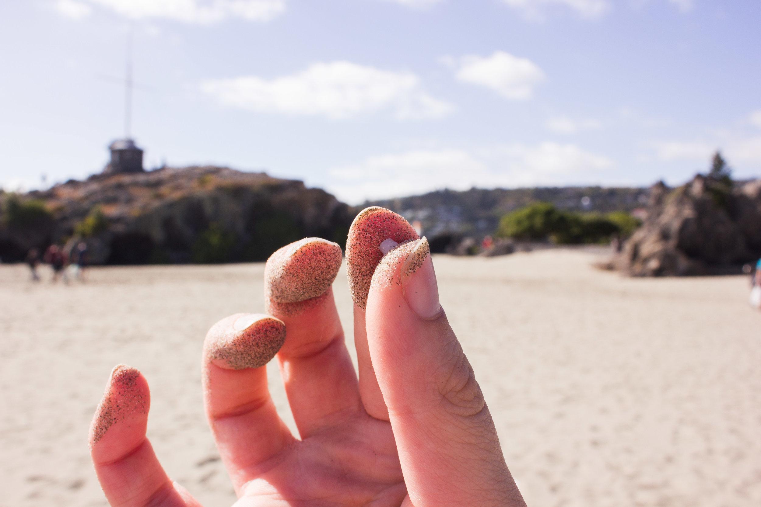 beach-clean-8.jpg