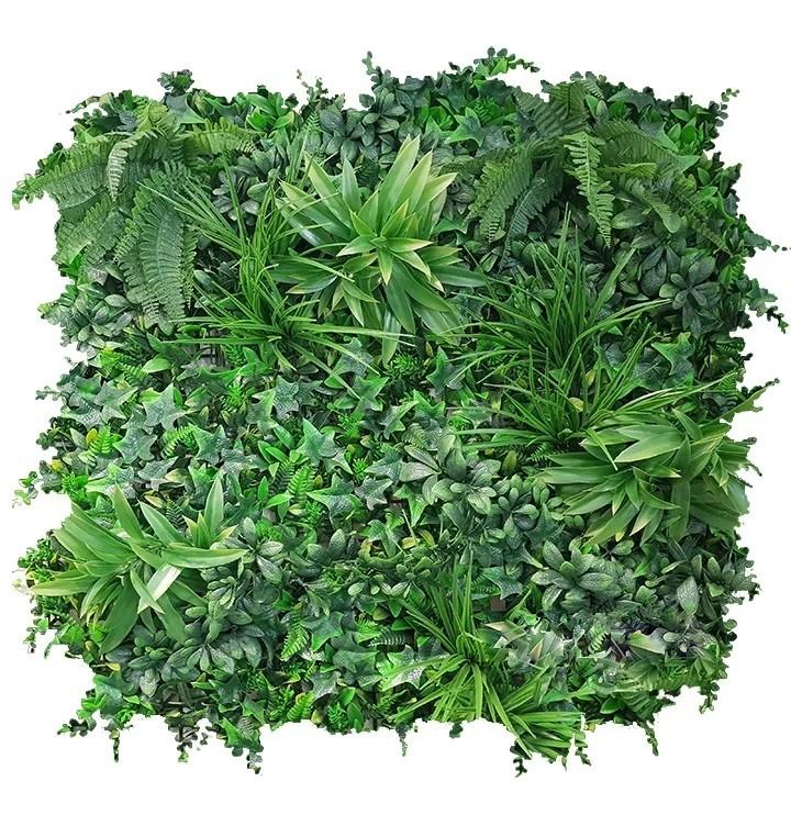 EvergreenCoastal.jpg