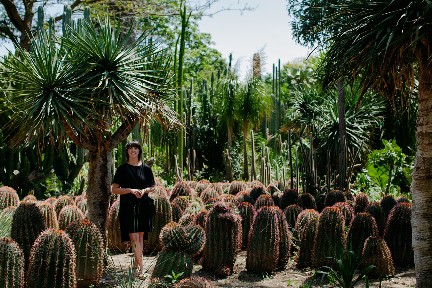 Whilst travelling through Graaff-Reinet a couple of years ago, Harald and I encountered  the dense cacti jungle, Obesa Nursery. I'm not all that comfortable in front of a camera, but this scene seemed worthwhile capturing.