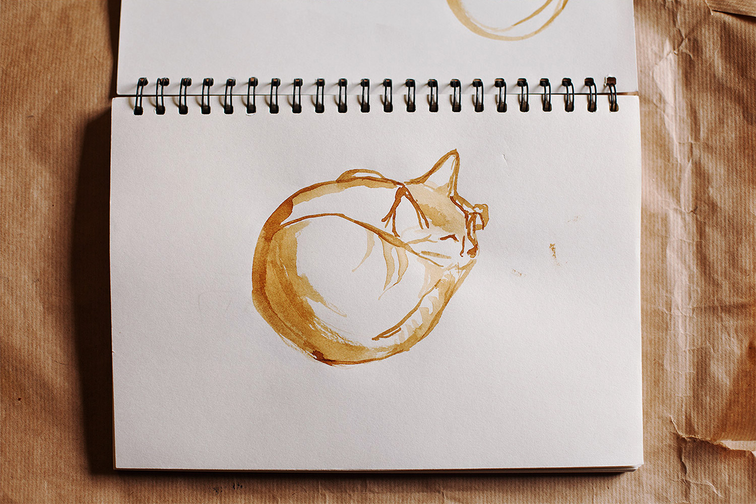 I have a great love for cats, and this particular ink drawing is of my own feline companion.