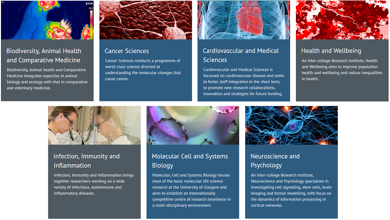 Screenshot from the MVLS Research Institutes webpage.