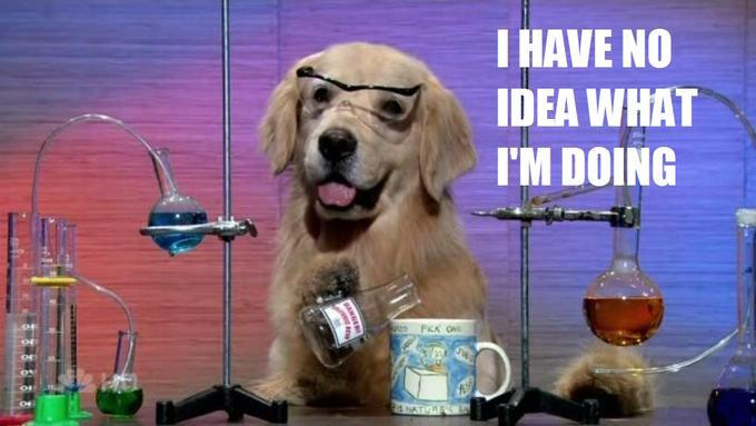 "A meme of a Labrador sitting behind a chemistry set. The text reads ""I have no idea what I'm doing""."