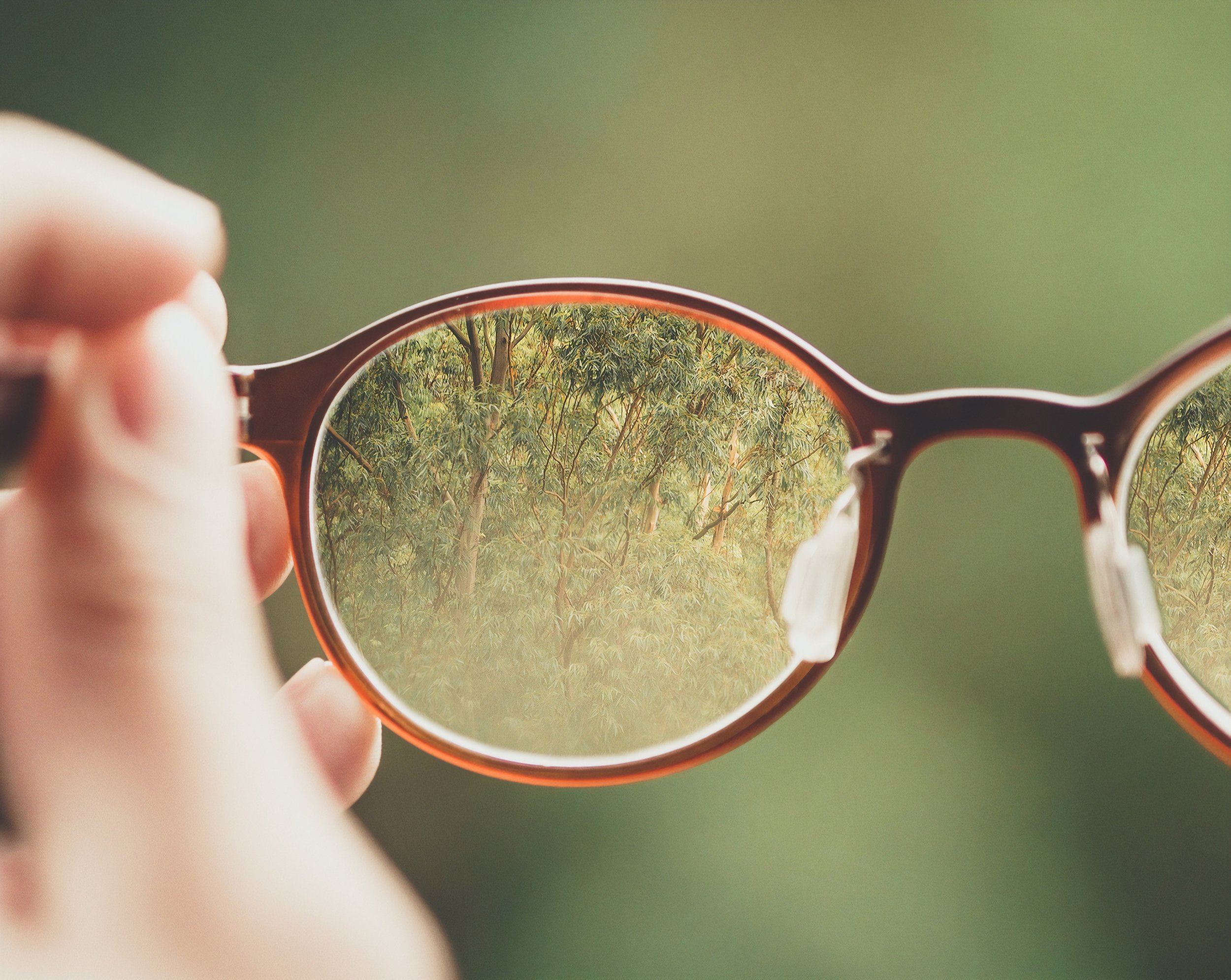 [Image Description: A hand holds up a pair of glasses, with one of the frames in focus, reflecting trees in a blurry distance.]