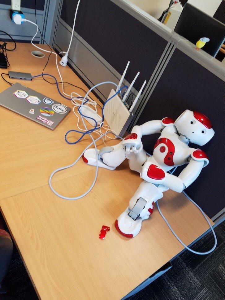 Anna's robotic friend Nao.