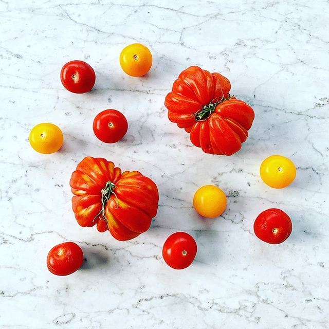 🍅TOMATO SEASON🍅 . The start of June officially marks the start of the UK tomato season! Did you know it's actually a fruit? . The humble tomato is a powerhouse of nutrients, including calcium (yep, not just in dairy), magnesium, potassium, beta-carotene amongst others. They also contain something called carotenoids, which are powerful antioxidants. One of these, lycopene, may support the reduction of LDL cholesterol. Cooking tomatoes increases their antioxidant potency but you may loose some of the other vitamins in doing so - so get a mix. . I love making up a big batch of salsa to have in the fridge (@wondergut.com1 has a great recipe for a fermented tomato salsa), sliced tomatoes on toast with ricotta and a generous sprinkling of salt or roasted with garlic and rosemary. . Now is a great time to grown your own and get the whole family involved. I've trained F to remind me to water them daily and he loves getting involved too. . . . . #whatsinseason #plantbased #nutrition #nutritionist #plant101 #eattherainbow #antioxidants #plantbased #tomatoseason #growyourown #familyfood