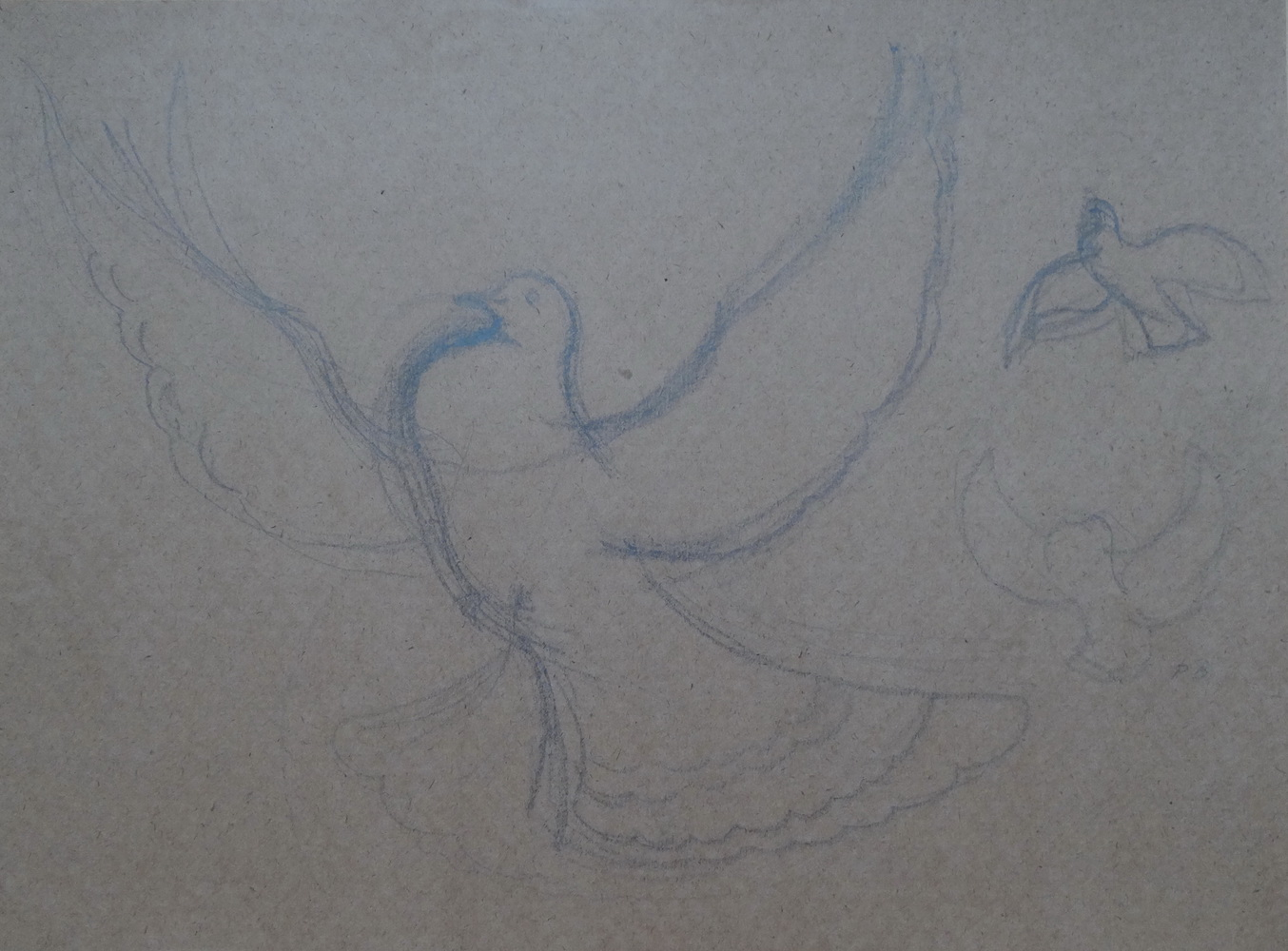 1986, Holub, kresba na papieri, 42 x57 cm