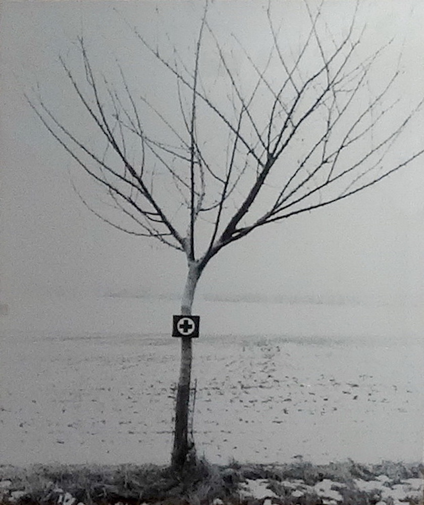 1972, Krabička, fotografia, 44x37,5 cm