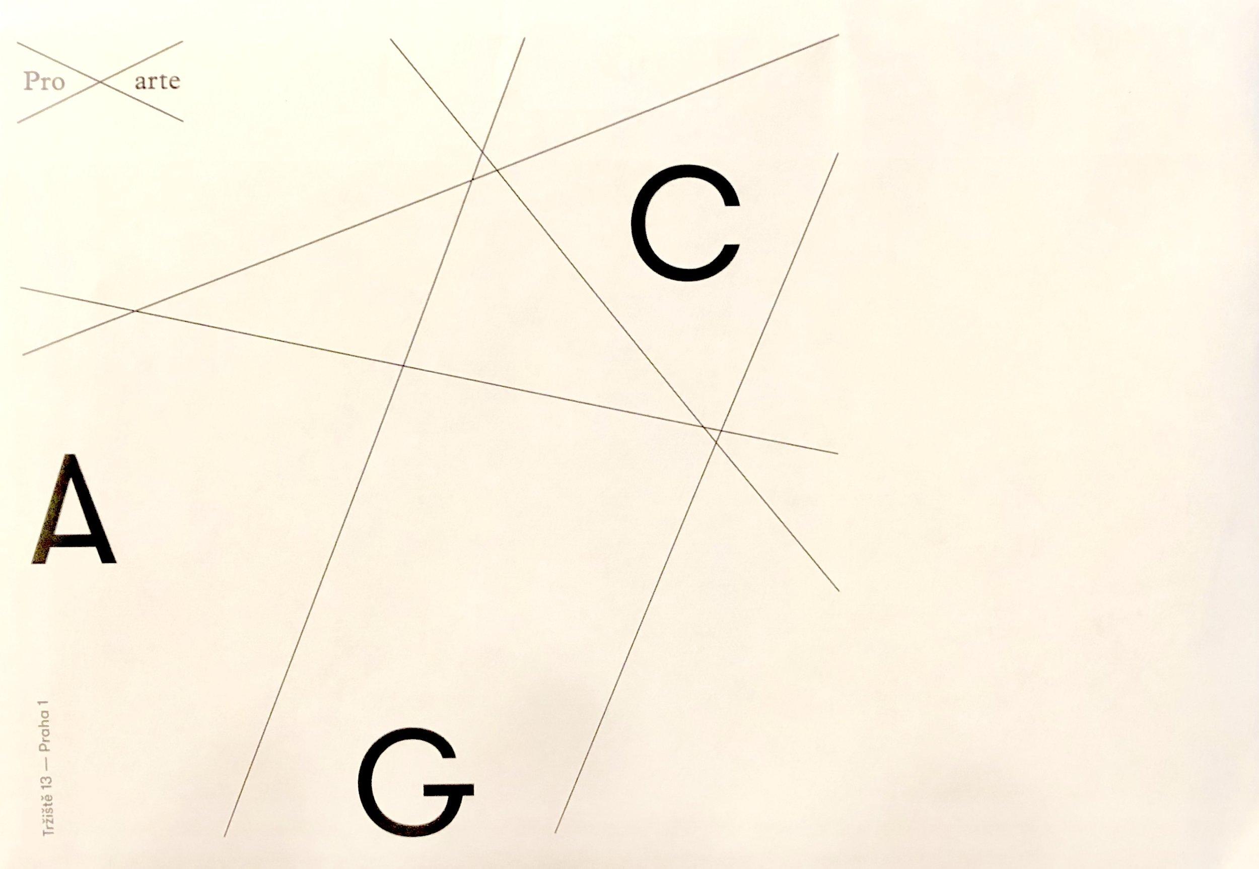 CAG 2.jpg