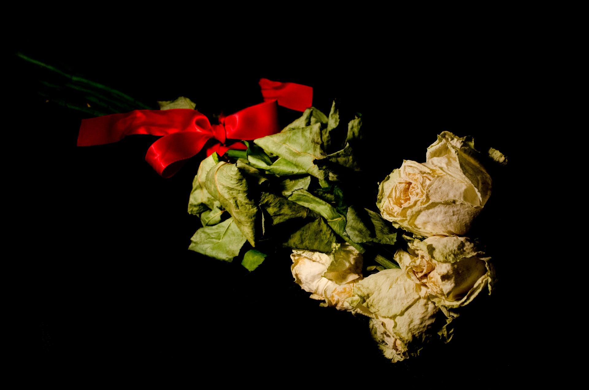 dead-flowers.jpg