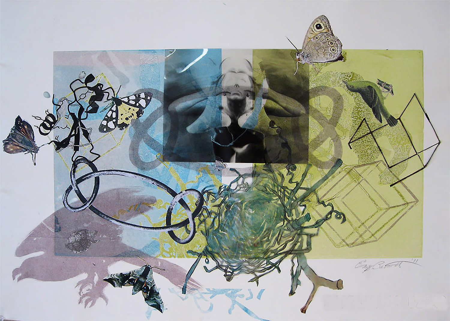NestKnot 1, 2014, Silkscreen with Collage Elements, 22 x 30