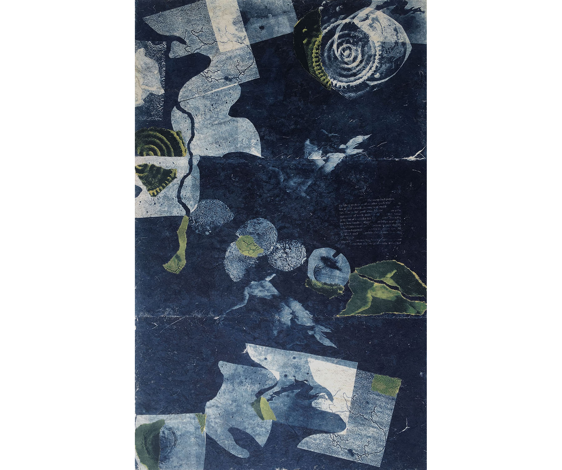 The Unexpected Profusion (You Are Here), 1997, Cyanotype with Chine Colle on Rice Paper, 44 x 24