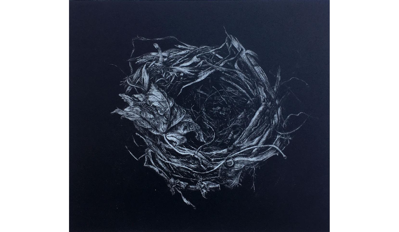 Dark Nest, 1999, Mezzotint, 8 x 9