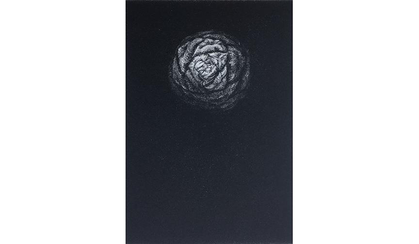 Sequoia Pinecone, 1999, Mezzotint. 5 ¾ X 4