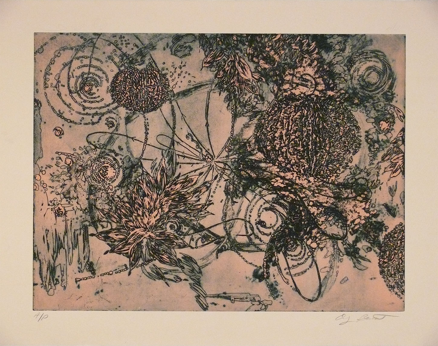 Microcosms, Pink, 2005, Viscosity Etching, 22 x 30