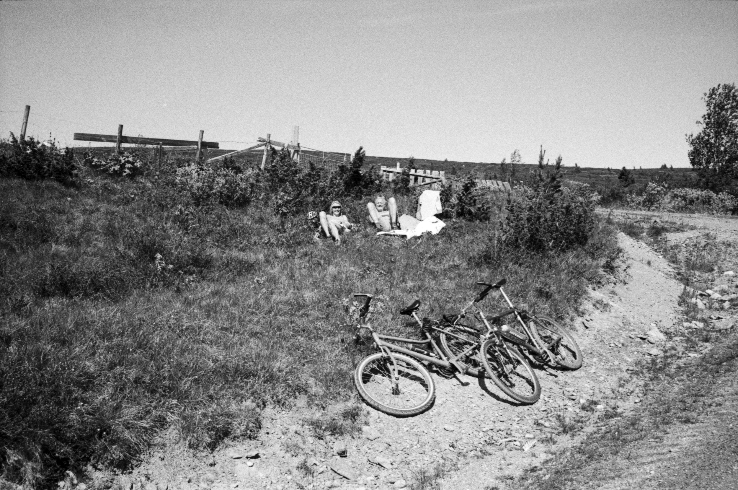 bikeppl.jpg
