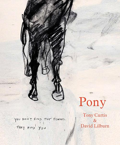Pony cover.jpg