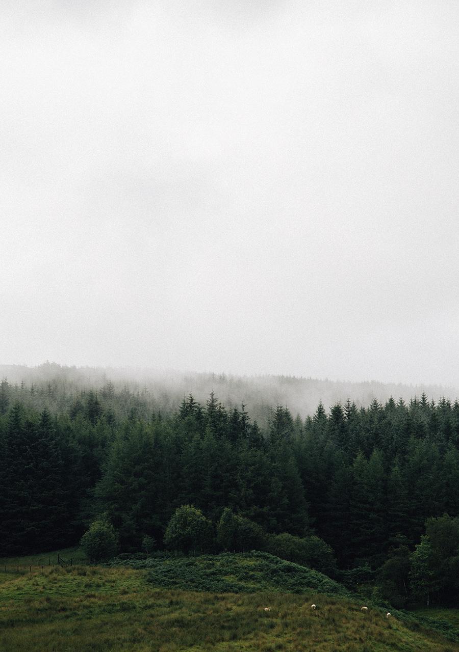 The Highlands-13.jpg