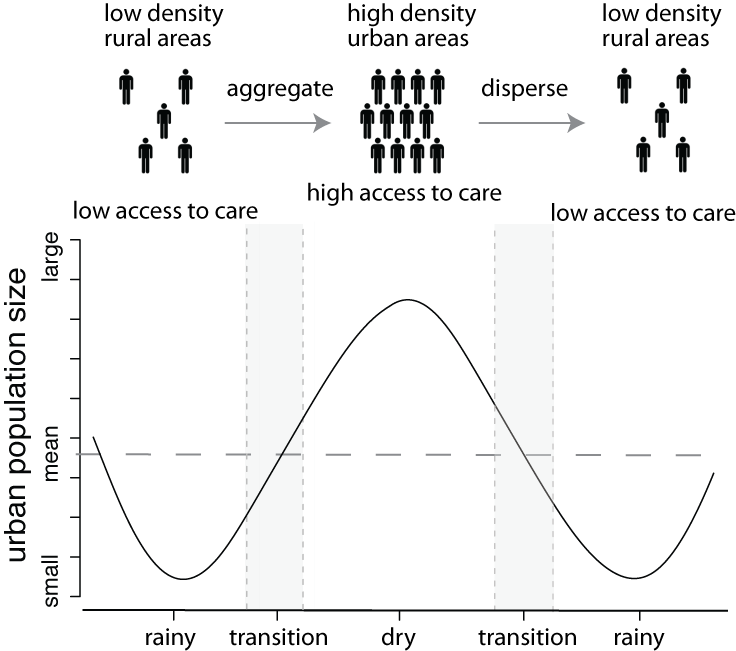 A schematic of population dynamics for seasonally mobile populations. In agriculturally driven economies, such as Niger, population density, measles transmission, and access to health care simultaneously increase during the dry season as urban populations grow. These populations decline during the rainy season, leading to decreased measles transmission as well as reduced access to health care and measles prevention. From Bharti et al 2016 Nature Scientific Reports.