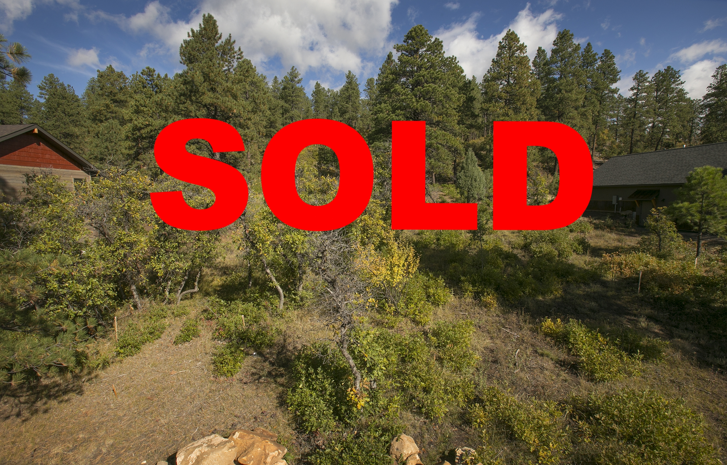 Lot 253, 483 Red Canyon Trail - the timbers at edgemont highlands