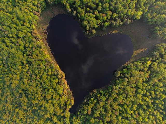 I found this heart shaped lake in Ontario. I love the new perspectives I get with my new toy 📸@alexchoquette_photography. Unfortunately I got a flat tire on the un paved road leading to that lake. I had to sleep there since there was no spare on my Van. At least, I got to see the sun rising up on the lake. . . . . . . . . #horizon_lussier #roadtripultramar #camperlifestyle #vanlifemagazine #vanlifeexplorers #projectvanlife #aerialphoto #aerialphotography #viewfromtheair #homeiswhereyouparkit #heartlake #heartshaped #ompah #heartshapedlake #campingcanada #campinglife #pleinair #pleinairmag  #onserejointdehors #exploreoutdoors #dronephotography #dronephotos #droneperspective #quebecoisenvoyage #nomademag #aventuriersdunord #quebec_travelers #djimavicair