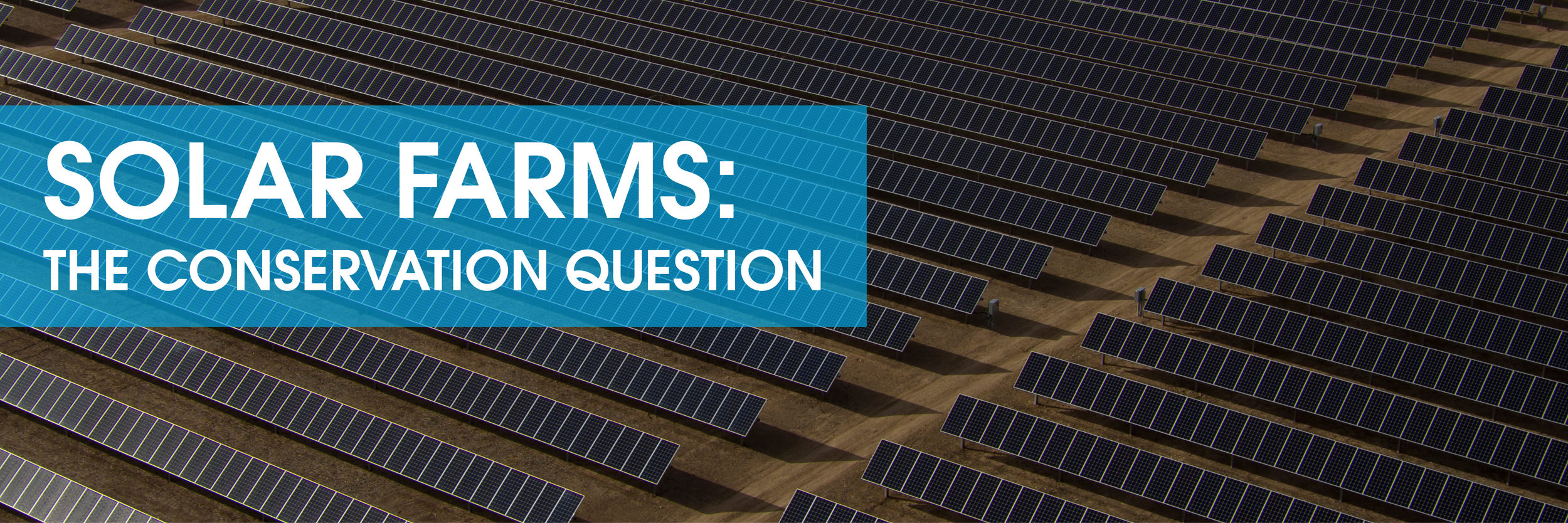 solarfarm_conservation_rooftopsolar_optimus_solar_florida.jpg