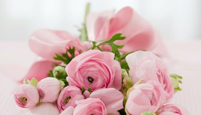 roses-142876_1280.jpg